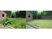 Barry's Garden Clearance & Maintenance - Pressure cleaning, tree cutting, lawn mowing, waste removal