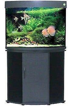 36 Gallon Fish Tank Ebay