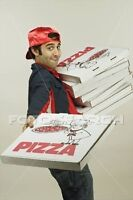 Pizza Delivery Driver Needed !