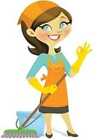 House keeper/cleaning lady