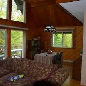 Beautiful 'Georgian Bay Classic' Cottage for Rent for Winter