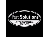 Pest Control Edinburgh | BPCA | FREE Survey | Rodents, Insects, Birds | Pest Solutions Edinburgh