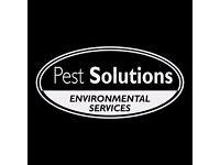 Pest Control Edinburgh | BPCA | FREE Survey | Rodents, Insects, Birds | Pest Solutions Edinburgh