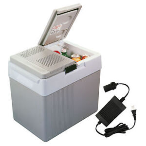 Portable electric cooler on wheels