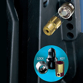 "Outboard Motor Lock  Fits Most Small Outboards 5/16"" - 18 Thread"