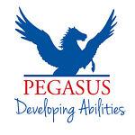 Pegasus ponies artwork
