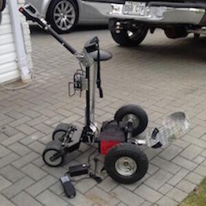 Cart de golf 4 roues