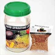 Sprouting Jar