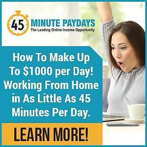If You Can Spare 45 Minutes A Day, We Can Offer You A Proven Business System For Making Up To $333/Day From Home!