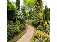🍃4 seasons garden maintenance specialists🍃 FROM £10. FREE quotes. Gardening, Gardener, jetwashing