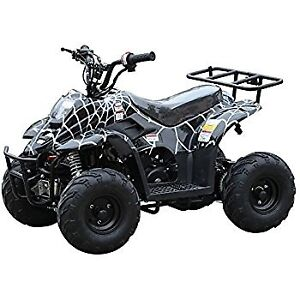 110cc Kids ATV on for $649.99! Limited time offer!  905-856-6661
