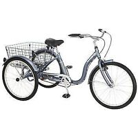 NEUF - Roadmaster™ 24-in. Adult Tricycle