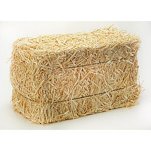 Looking for square bale of straw