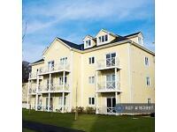 1 bedroom flat in Alisander Close, Holborough, ME6 (1 bed)