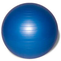 Exercise Ball Gym Ball Stability Ball Like New Each $15