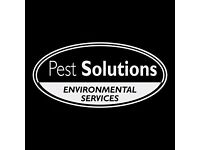 Pest Control Service Glasgow | BPCA | FREE Survey | Rodents, Insects, Birds & more | Pest Solutions