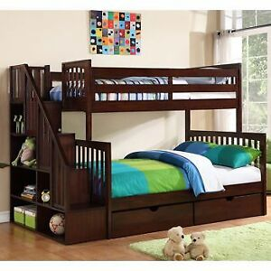 Bunk Bed with Book Shelf & Case