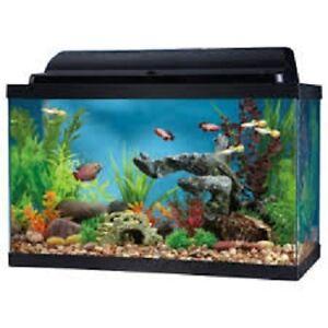 10 gallon fish aquarium