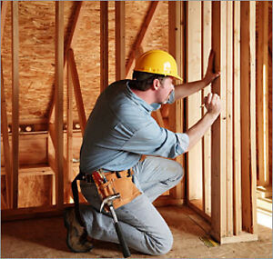 Experienced Carpenter/Handyman for reno's & other stuff