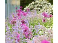 Still Looking - 6 August - Landscape Gardeners Wanted - Full or Part Time Days - £17-£21k