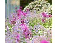 Landscape Gardener Wanted - Full or Part-time Days - £17-£21k - Start Tomorrow