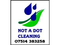 Personal Domestic Cleaning Services