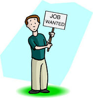 I am looking for a Job