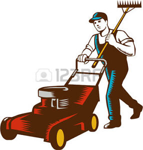 free estimate on your lawn mower,,,paradise area 782-7381