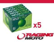 KLR 650 Oil Filter