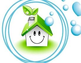 Professional cleaners, End of tenancy cleaning, Window cleaner, Housekeeper Clean Carpet services