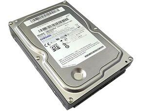 Samsung 250 Gig SATA hard drive