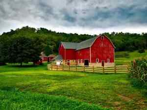 Hobby farm wanted