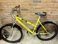 Newly refurbished Raleigh Siren Mountain Bike