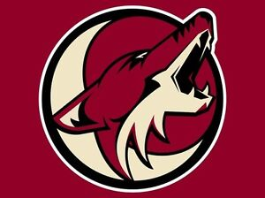 Calgary Flames vs Arizona Coyotes - Nov 16 - PL5 - Food Included