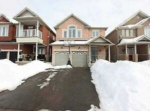 walkout basement for rent brampton real estate for sale