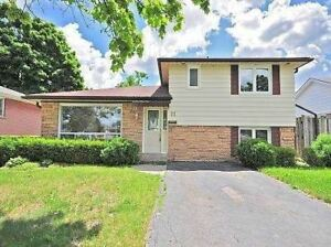 For Rent 4 Bedroom Split level in Brampton