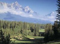 Stewart Creek Golf & Country Club - Golf Operations Team