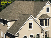 roofing toitures