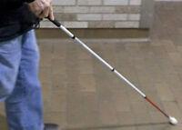 Accompagnatrice pour personne aveugle,âgée ou non autonome.