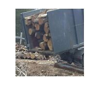 Hardwood firewood logs 18 face cord 6 bush save $ 950 + incl del