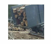 Hardwood, firewood logs 18 facecords/6 bushcords