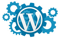 Experienced WordPress designer/developer needed