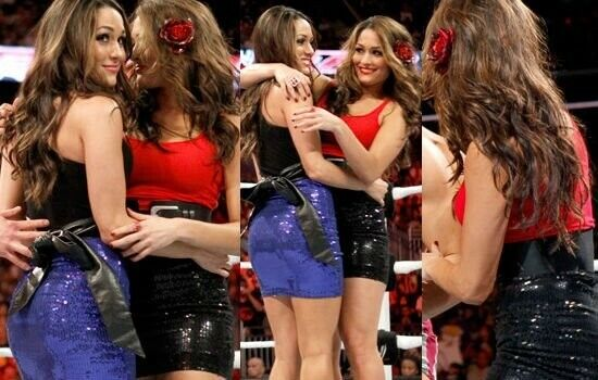 Bella Twins Screen Worn (Ring Worn) Skirts Nikki Bella, Brie Bella