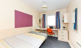 STUDENT ROOM TO RENT IN BIRMINGHAM EN-SUITE WITH COMMUNAL KITCHEN AND SHARED LIVING SPACE