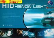 GU Patrol Headlights