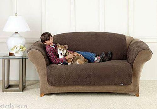 Dog Sofa Protector Ebay