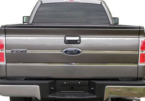 FORD F-150 TAILGATE ASSEMBLY COMPLETE FITS 06-08 NEW $315.00