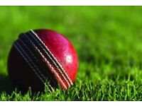 Friendly, Palmers Green, London cricket club looking for players.. contact us for more info