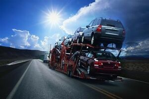 Specialized transport services for all kinds of freight