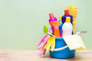 HOUSE CLEANER POSITION FOR A CLEANING COMPANY